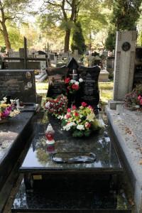 Nagrobki warszawa cmentarz bródnowski angola